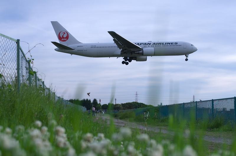 千里川堤防 飛行機
