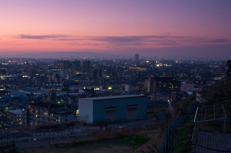 柏原・八尾の夕陽を観音寺展望台から