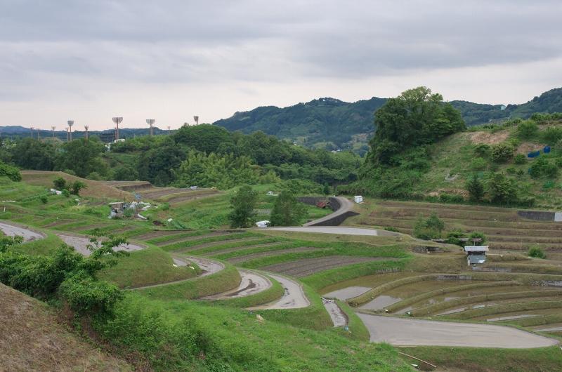 下赤阪の棚田 水張り