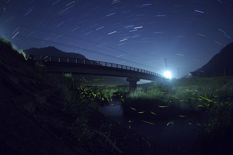 兵庫県 三田市 ゲンジボタル