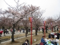青春18姫路城5