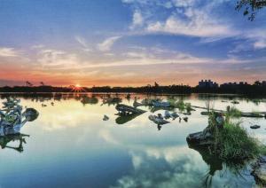 羅東林業文化園區 (羅東林業文化園区)