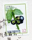 切手9  台湾