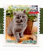 切手  157