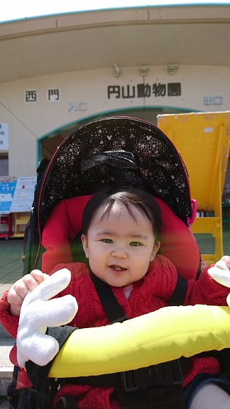 円山動物園1