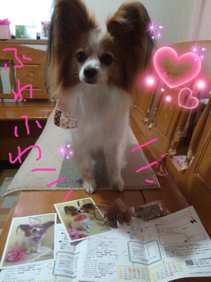fc2blog_20160519203813438.jpg
