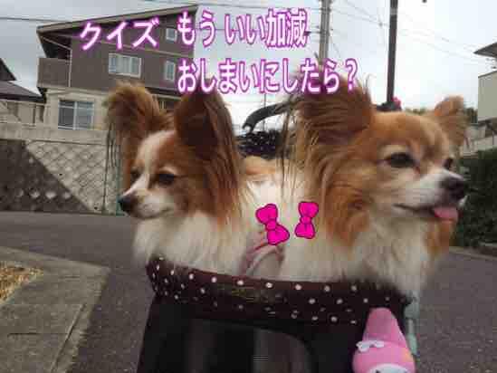 fc2blog_20160622203320d7c.jpg