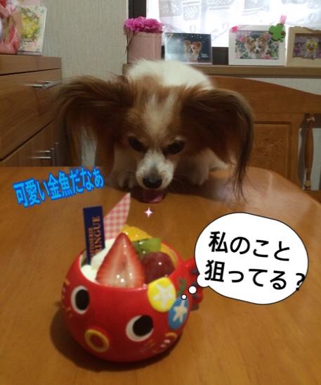 fc2blog_20160709211802439.jpg