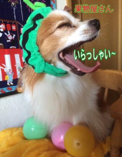 fc2blog_2016072019440310a.jpg
