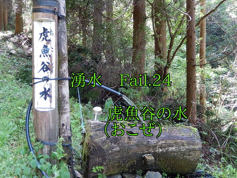 PFVhg_XhEiGKaew1462448915_1462449038.jpg