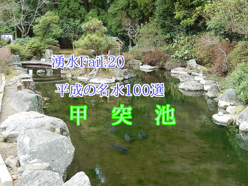 YU777F84bzV30IE1460892497_1460892652.jpg