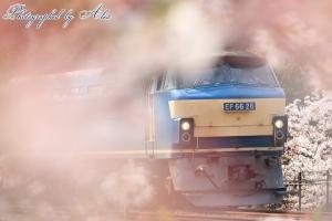 2070レ(=EF66-26牽引)