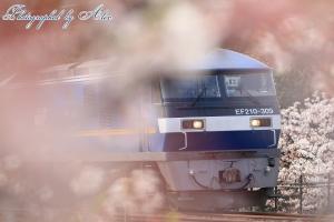 1074レ(=EF210-309牽引)