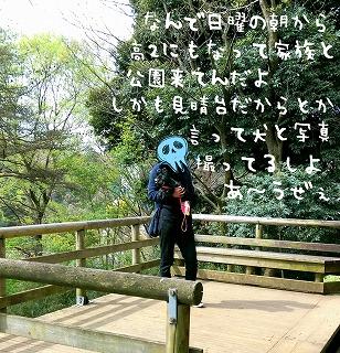 2016-04-13_202031.jpg