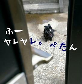 2016-05-01_14_49298.jpg
