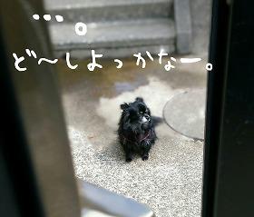 2016-05-01_14_49301.jpg