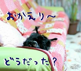 2016-05-04_10_49506.jpg