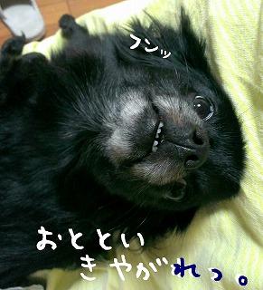 2016-06-01_16_50485.jpg