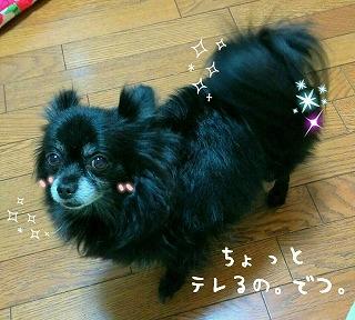 2016-06-04_23_50611.jpg