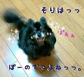 2016-06-12_20_51270.jpg