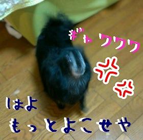 2016-06-12_21_51283.jpg