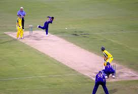 single_wicket.jpg