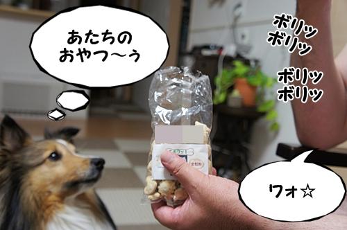 クッキー9