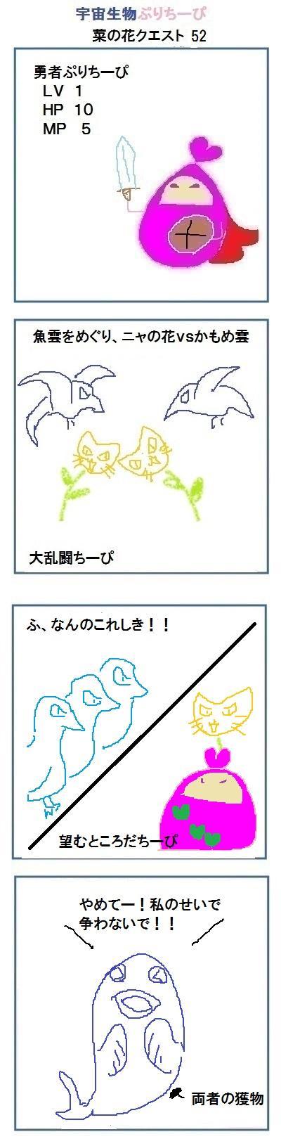 160529_菜の花52