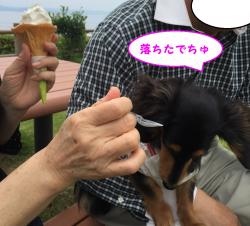 IMG_1834_convert_20160523111811.jpg