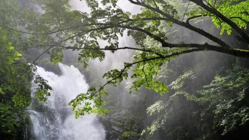 8333瀬戸の滝166239