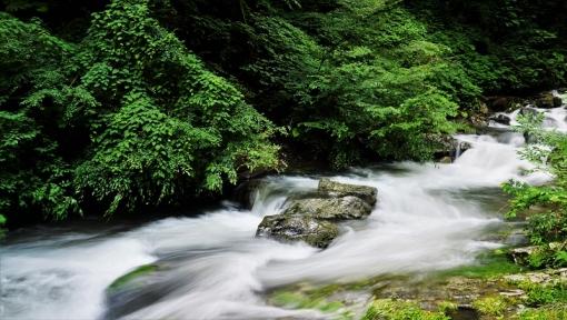 8315瀬戸の滝166238
