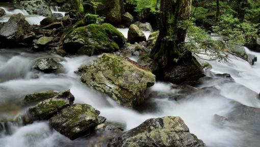 8381瀬戸の滝1662311
