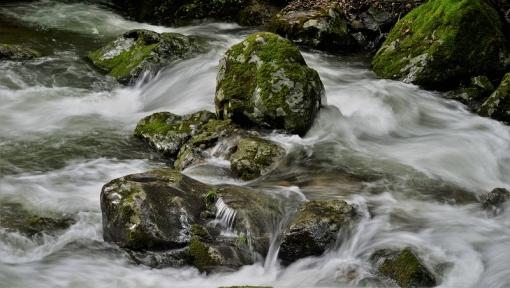8389瀬戸の滝1662312