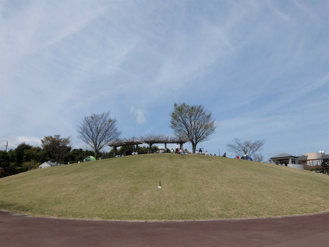 SDSCF0181.jpg