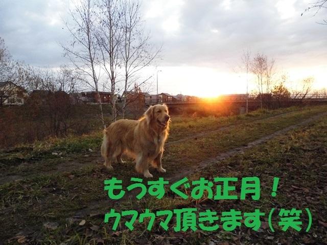 CIMG2753_P.jpg