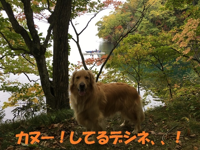 IMG_6814_P.jpg