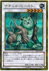 card100010852_1.jpg