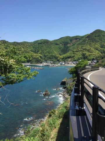 gwyoshi240.jpg