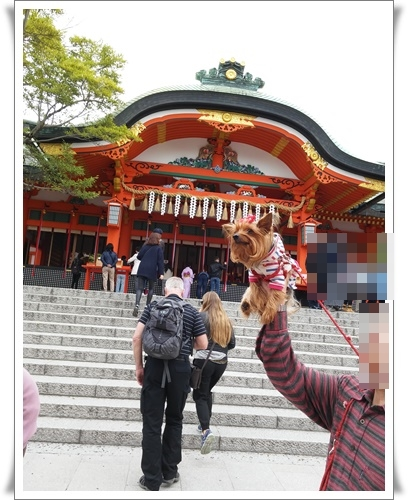京都IMG00782-20160406
