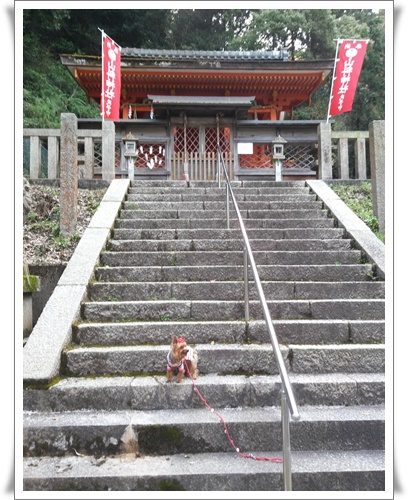 京都IMG00795-20160406