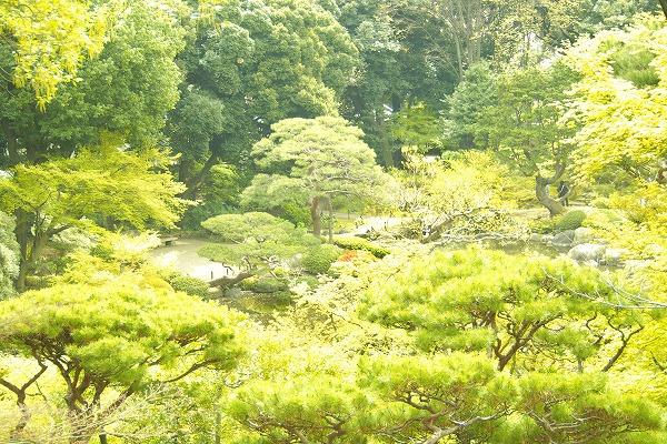 和と洋のお庭
