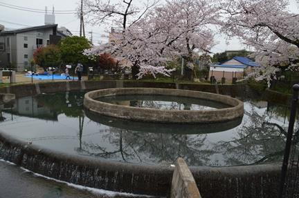 2016-04-02_38.jpg