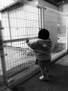 photo1012.jpg