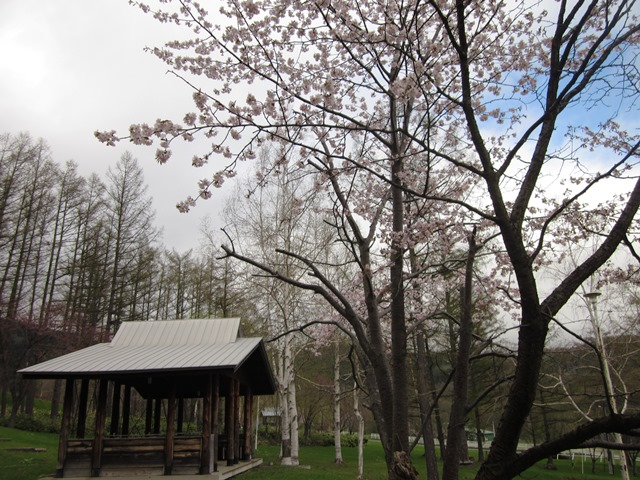 桜 保養センター