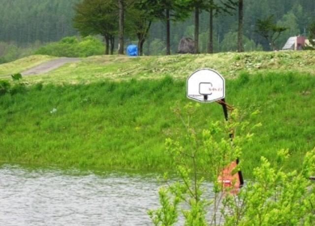 湖 バスケットゴール