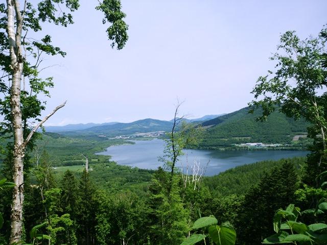 かなやま湖を望む