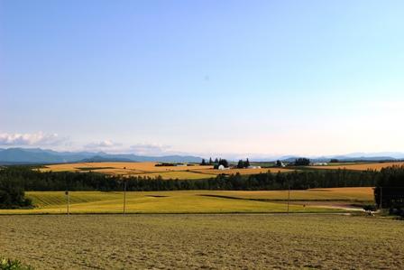 富良野の風景