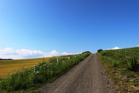 西達布の丘