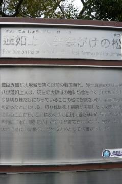 P1100448.jpg