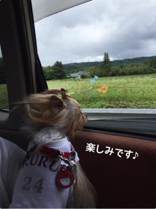 fc2blog_20160627093904df6.jpg